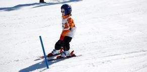 little boy skiing フォト
