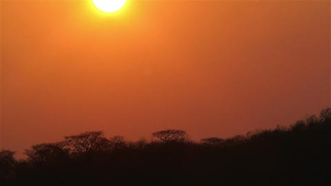 African Sunset over Jungle in Dry Season Timelapse 1 Stock Video Footage