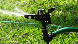 Garden Water Spray 2 Stock Video Footage