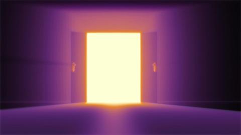 Mysterious Door 5 Stock Video Footage