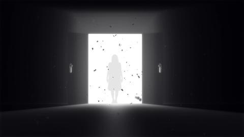 Mysterious Door v 2 5 yurei Stock Video Footage