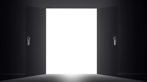 Mysterious Door v 5 1 Stock Video Footage