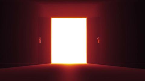 Mysterious Door 0