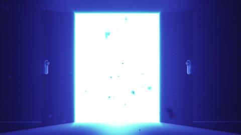 Mysterious Door v 5 9 Stock Video Footage
