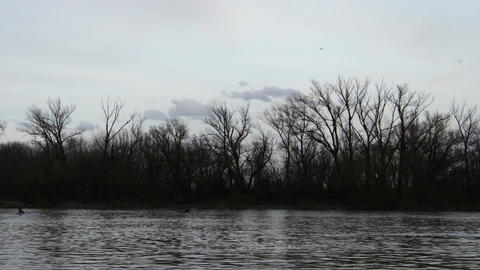 River in Early Spring Timelapse 3 pan Stock Video Footage