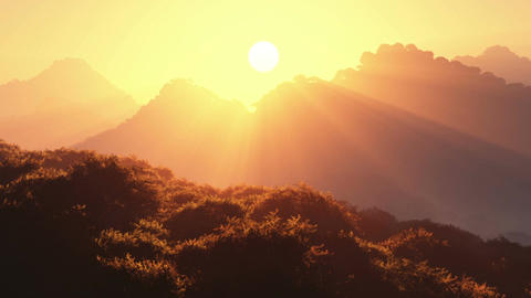 Sunset in Deep Jungle 1 Stock Video Footage