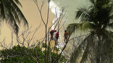 Tropical Paradise in Mexico 29 Stock Video Footage