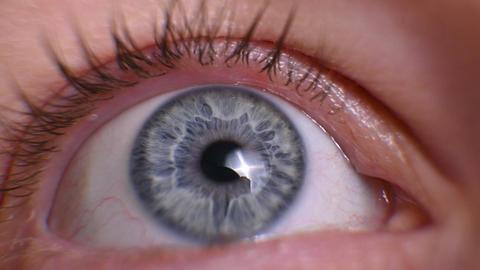 woman's eye close-up. human eye macro. blue female eye Live Action