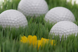 golf balls in a meadow with flower 사진