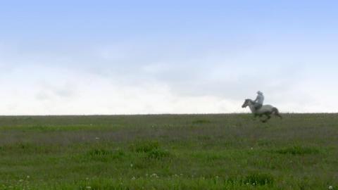 Lone horseman Footage