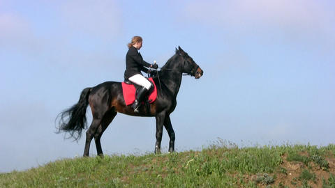 Horseman on the hill Stock Video Footage