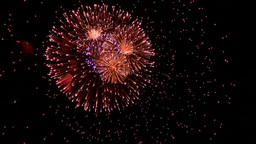 Volleys firework multi Stock Video Footage