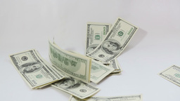 American dollars falling on white background Stock Video Footage