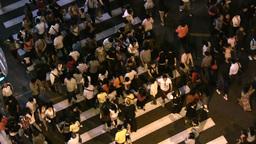 Busy zebra in Shanghai shopping street Footage