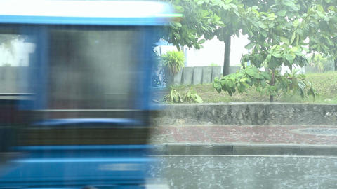 Tropic rain Stock Video Footage