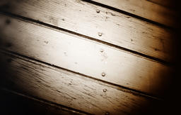 Wood wall, close up.Texture background. Great details Photo