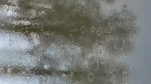 Abstract footage of reflection on water in puddle at rainy weather, reflective Live Action