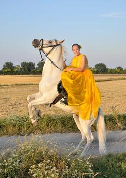 Side saddle horse riding horse rising Photo
