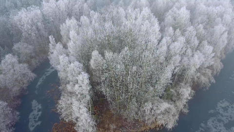 Aerial view of the winter background with a snow-covered forest and lake from ab Footage