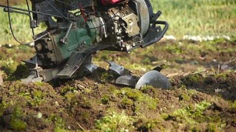 Tilling a garden with a rototiller Stock Video Footage