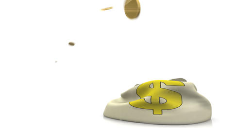Coins Falling In Money Bag stock footage