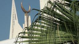 Islamic crescent behind fern tree Footage