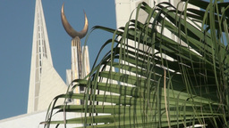 Islamic crescent behind fern tree Stock Video Footage