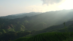 Rays of sunlight go over rice paddies in China Stock Video Footage