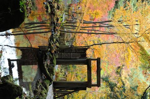 Hajime Kubota;Bamboo;Art Museums;Japan Fotografía