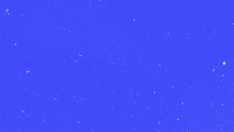 Natural Snow On Blue Screen Footage