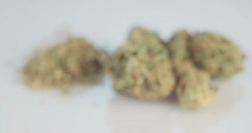 Macro shot of medicinal marijuana on white background Footage
