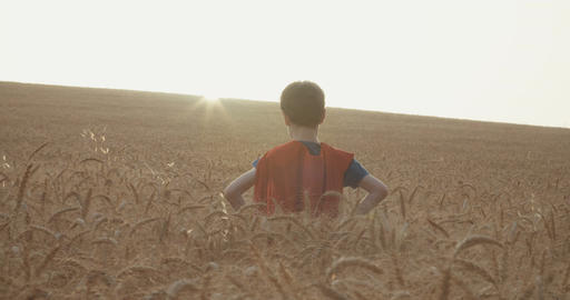 Superhero boy standing in a golden wheat field during sunset Footage