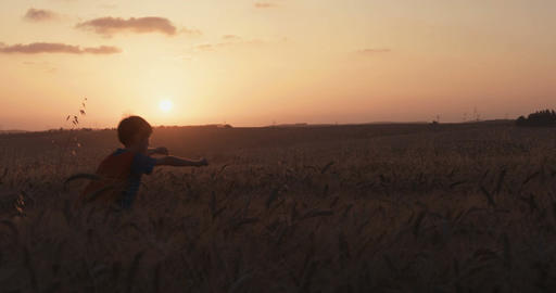 Superhero boy standing in a golden wheat field during sunset