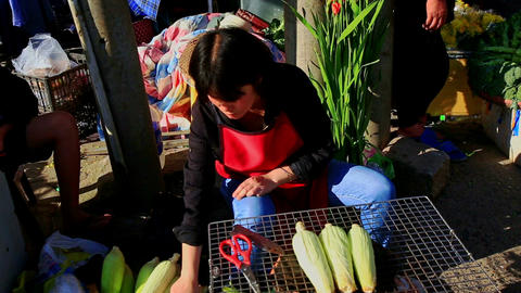 Woman Sits Peels Sells Corn-cobs on Street Market in Vietnam Footage