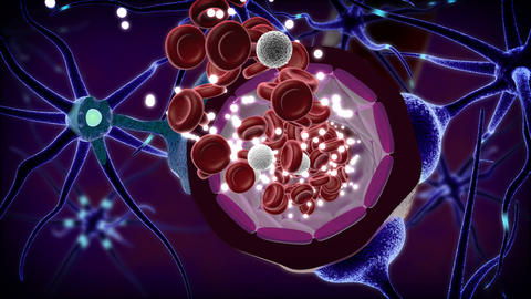 Drug across blood-brain barrier CG動画素材