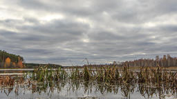 Low clouds over the marshy pond. Autumn, Russia. HDR. Time Lapse Footage