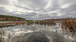 Low clouds reflected in the water. Autumn, Russia. HDR. TimeLapse Footage