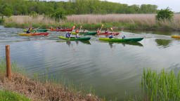 Adults with children kayak race. Kayaking in nature Footage