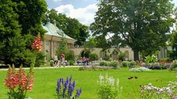 Baroque flower garden and Upper Palace in Pillnitz. Dresden Footage
