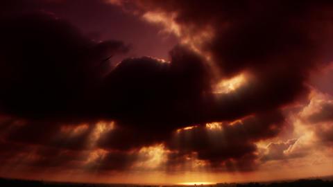 HD Ocean Horizon Bird in Cloud Stock Video Footage