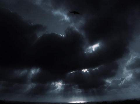 DV Black White Cloud Bird Shape Stock Video Footage