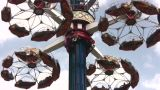 Carousel stock footage