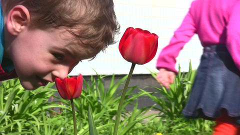 child with flower Stock Video Footage