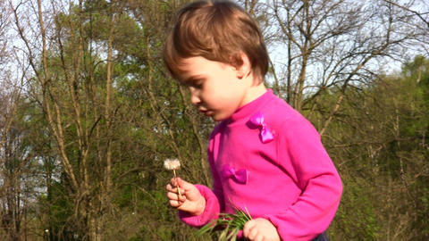 child with dandelion Footage
