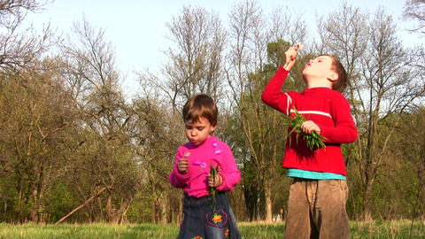 children with dandelion Stock Video Footage