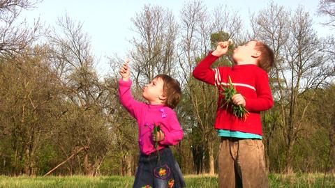 children with dandelion Footage