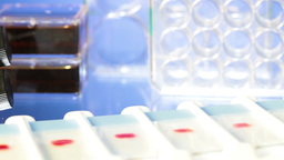 Microbiology laboratory Stock Video Footage