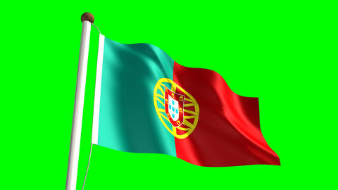 Portugal flag Stock Video Footage