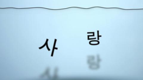 揺れる水韓国語で愛 Stock Video Footage