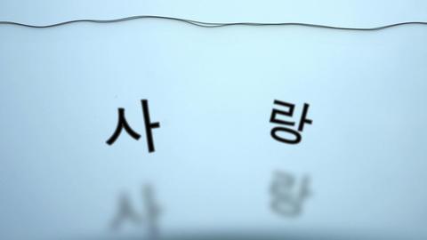 揺れる水韓国語で愛 stock footage